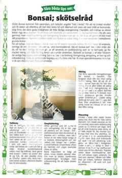 23. Bonsai; skötselråd