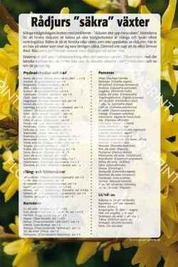 "14. Rådjurs""säkra"" växter"
