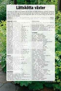6. Lättskötta växter