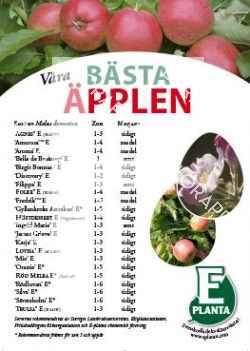 E-planta; Våra bästa äpplen
