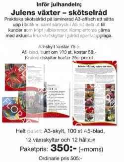Julens blommor - infopaket