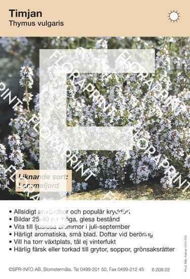 Thymus vulgaris (sorter:)