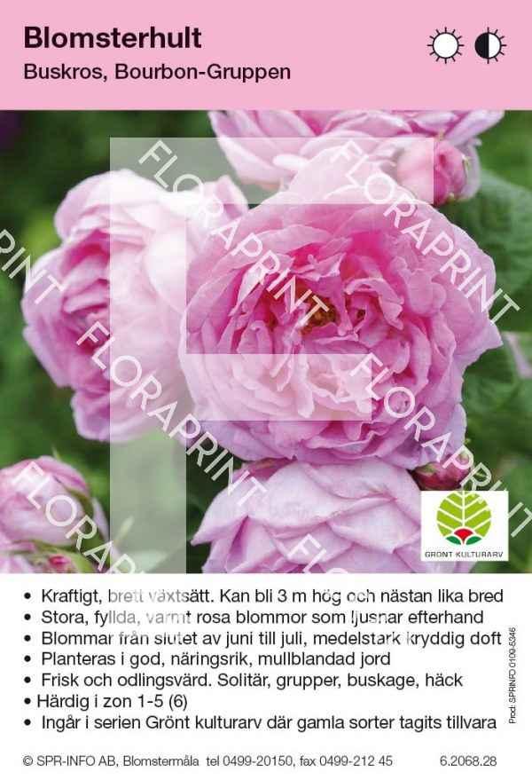 Blomsterhult